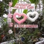 110 Шары на день влюбленных и любовь - морковь , цены в разделах  Шары гелиевые и Шары фольгированные .