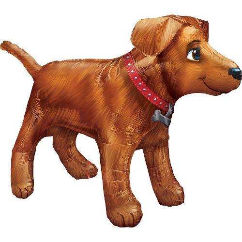 шар собака в Запорожье
