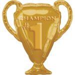 шар кубок для чемпиона в Запорожье